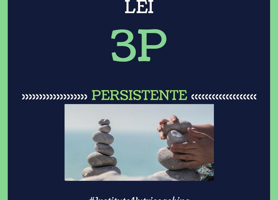3ª Lei 3P